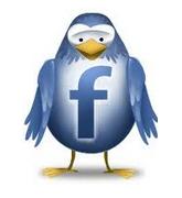 the facebook bird
