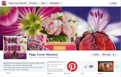 'Page Cover Mastery' facebook timelines for business page cover